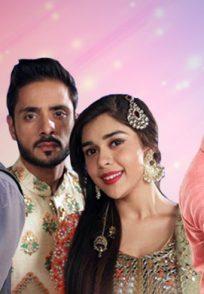 Couples from Zee TV shiows Guddan Ishq Subhan Allah Jamai Raja
