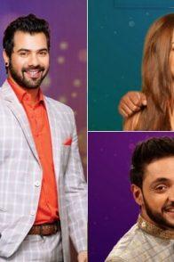 Zee TV show couples
