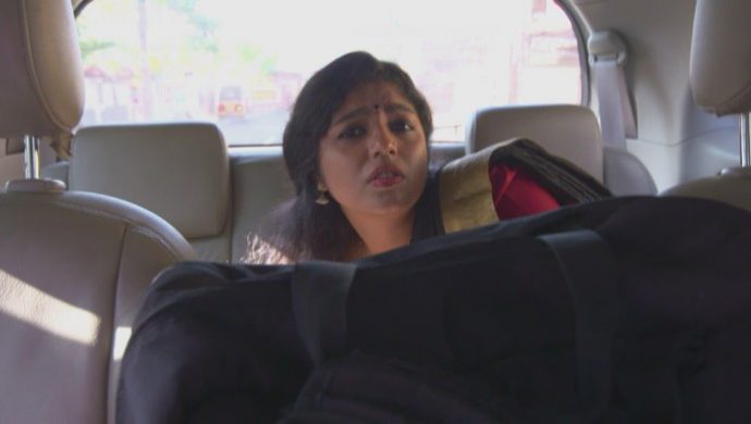 Kalyani hides