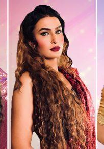 Pavitra Saree Collage