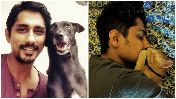 Siddharth With His Pets