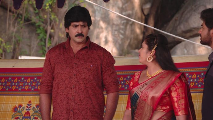 Brahmini and Krishna Prasad in Ninne Pelladatha