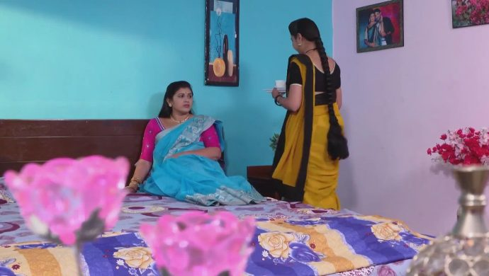 Mrudula and Brahmini in Ninne Pelladatha