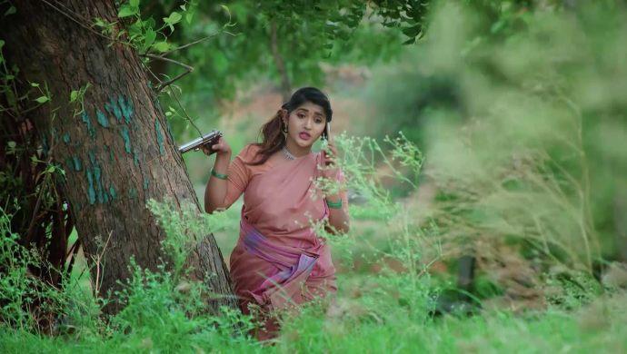 Thayaru in No 1 Kodalu