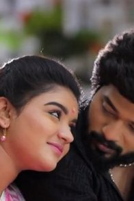 Adithya and Parvathy Of Sembaruthi
