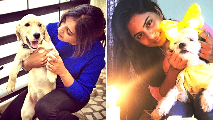 These Actors And Their Love For Doggo Will Make Your Heart Melt To Bits