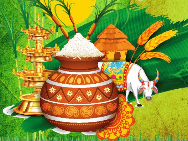 Here's How Sankranti Is Celebrated In Karnataka
