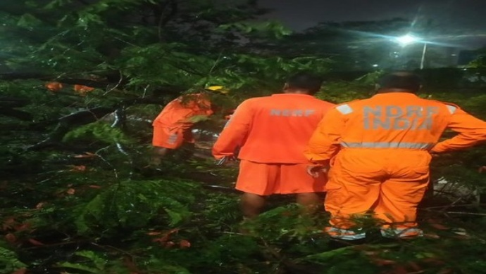 Cyclone Amphan: Road Clearance, Restoration Work Underway In West Bengal