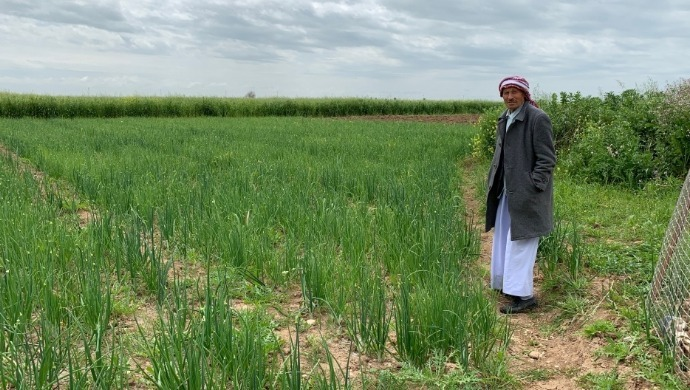 Iraqi Farmers Benefit As Government Bans Imports Due To Coronavirus Pandemic