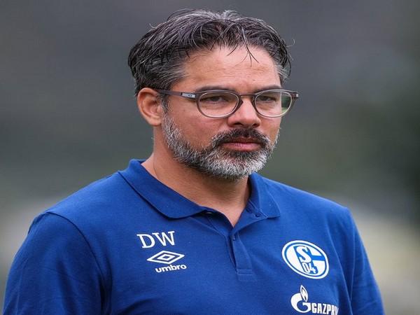 FC Schalke sack manager David Wagner