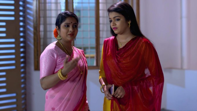 Chembarathi 11 September 2020 Written Update: What is Vilasini and Ganga's plan against Anand?
