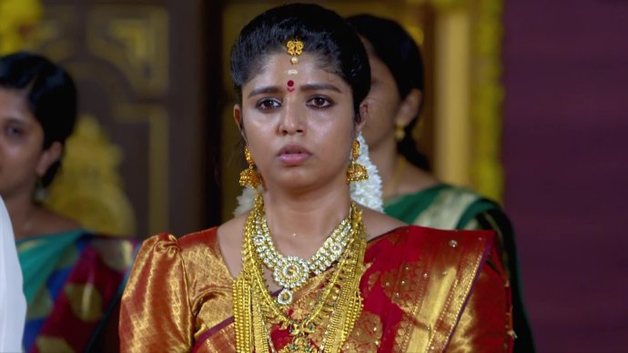 Chembarathi 04 September 2020 Written Update: Will Anand be able to trick Vilasini?