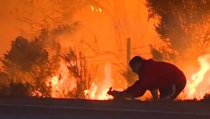 Scientists Say Climate Change Is Worsening US Wildfires