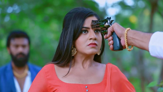 Naagin 2: Catch Up With All The Details Regarding Shivani's Kidnapping