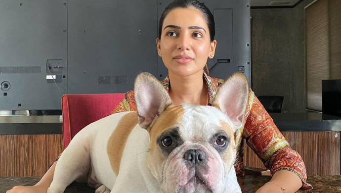 In Pics: Brahmotsavam star Samantha Akkineni is a dog person at heart, here's proof