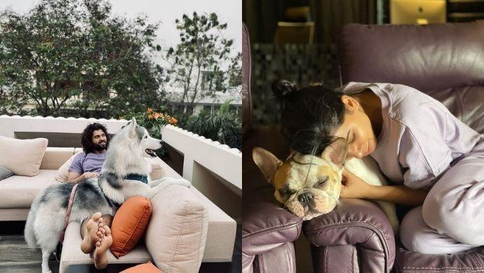 National Pet Day: Meet the furry friends of Vijay Deverakonda, Samantha Akkineni and more of your favourite stars