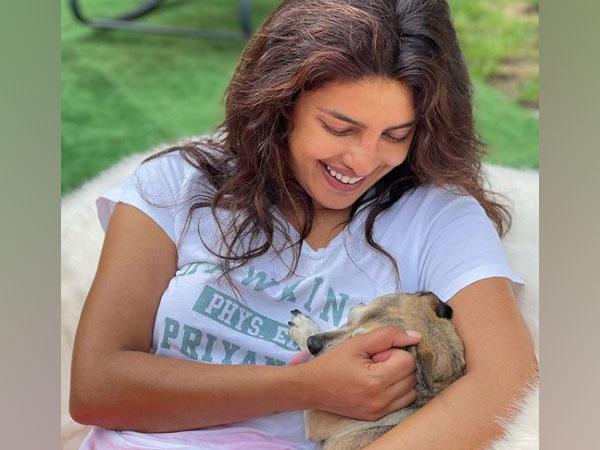 Priyanka Chopra reunites with her furry friends
