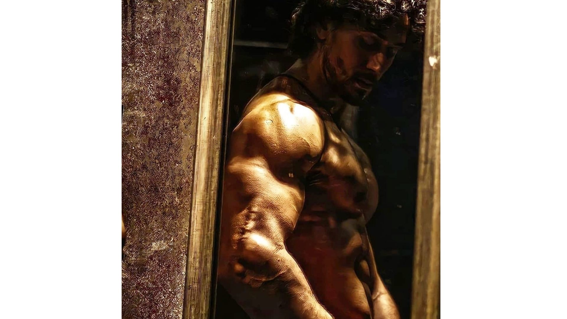 Tiger Shroff Shows Off His Biceps While Giving Us Major Fitness Fitness Goals – WATCH