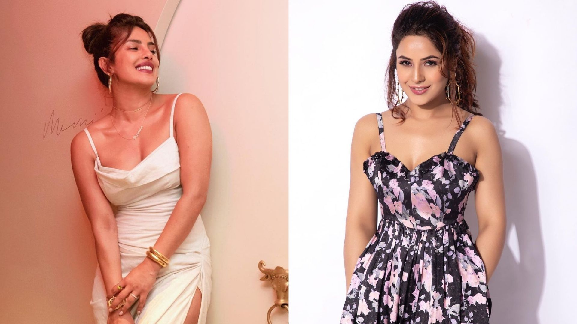 Priyanka Chopra To Shehnaaz Gill- 3 Actresses Who OvercameTragedies Like A Boss