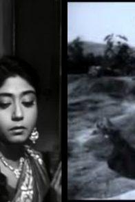 Nishi Padma-Rajkanya